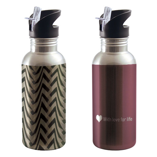 20 oz Stainless Steel Insulated Water Bottle with Straw (Silver)